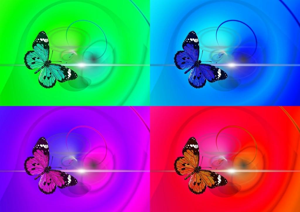 butterfly-436706_1280