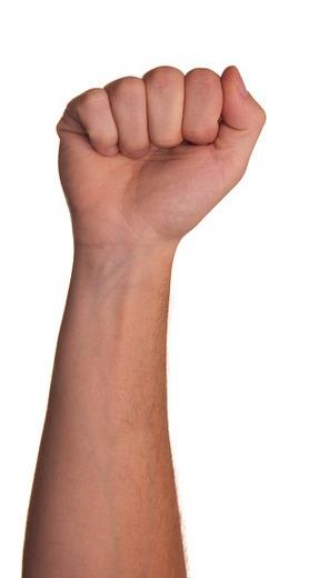 fist-424500_1280