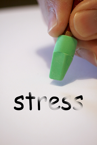 stress free photo