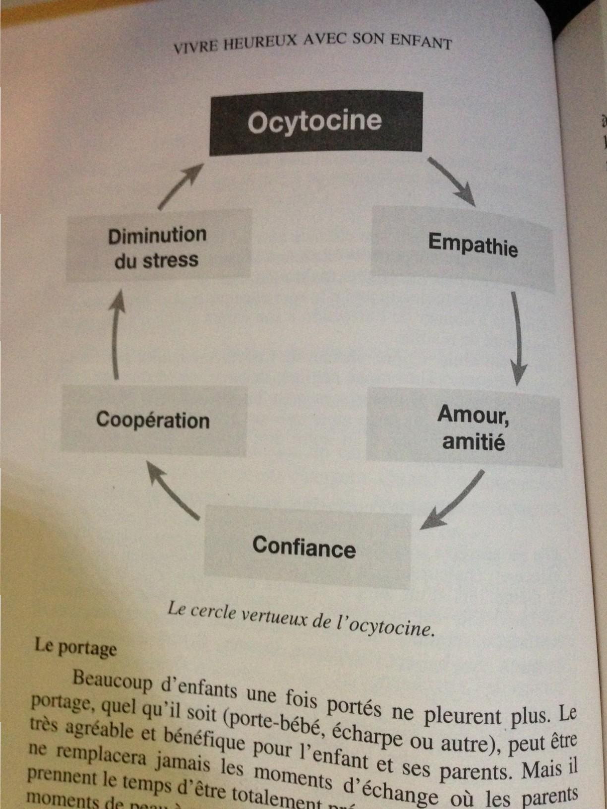 cercle vertueux de l'ocytocine