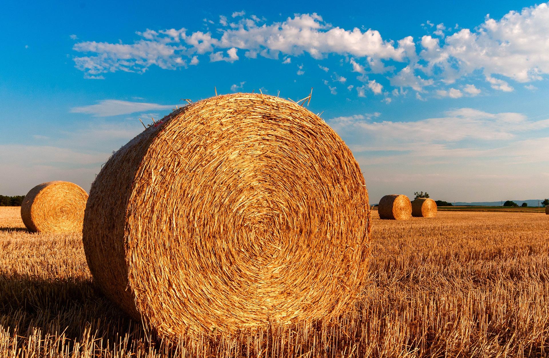 straw-bales-726976_1920