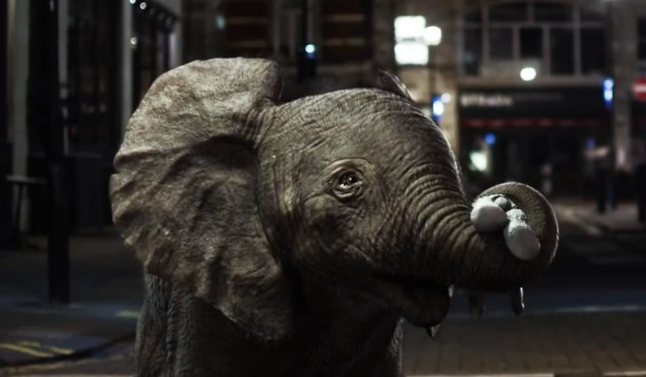 Bertie The Elephant