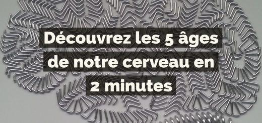 Découvrez les 5 âges de notre cerveau en 2 minutes