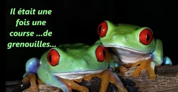La course de la grenouille : un conte métaphorique sur la confiance en soi