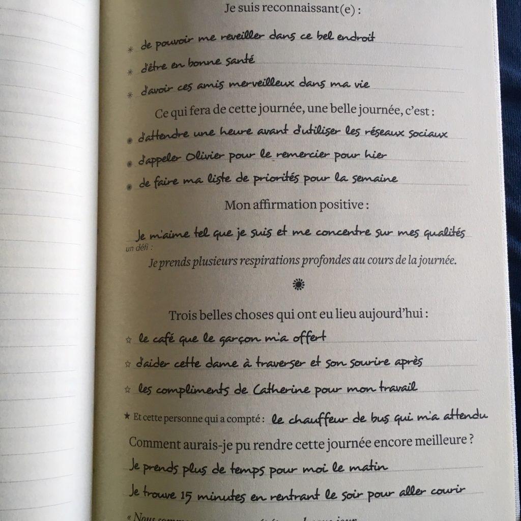 Mon journal de gratitude : un cadeau à offrir et à s ...